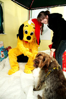 Dogs-Trust_Santa-Paws_SWP_007