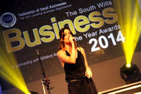 Sharon Corr at South Wilts Business of the Year Awards 2014