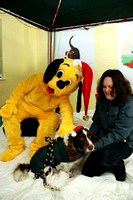 Dogs-Trust_Santa-Paws_SWP_016