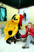 Dogs-Trust_Santa-Paws_SWP_018