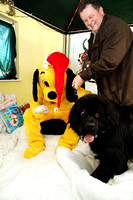 Dogs-Trust_Santa-Paws_SWP_006