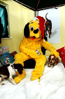 Dogs-Trust_Santa-Paws_SWP_008